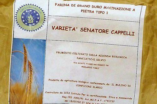 authentic Italian, recipes,Italian cooking, pasta, regional cuisine, Italy cooking school, Cavatelli