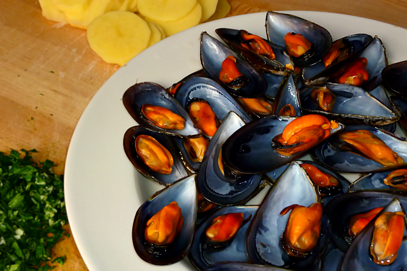 Mussels 022